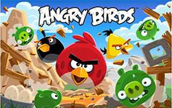 Illustration du jeu vidéo Angry Birds.