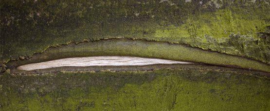 Photographie d'un paysage rappelant la forme d'une vulve.